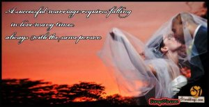 wedding-quotes01