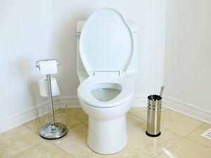 bathroom-toilet_17475_600x450